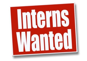 interns wanted